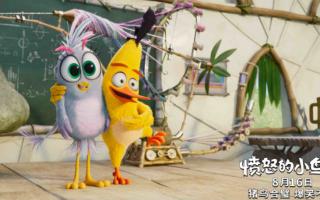 冰爽一夏!《愤怒的小鸟2》公布整装待发预告 期待上映