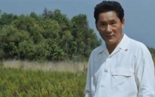 日本喜剧电影《菊次郎的夏天》:北野武的感恩与供养