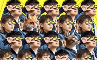 《动物管理局》今日开播 看陈赫王子文爆笑开启探案模式