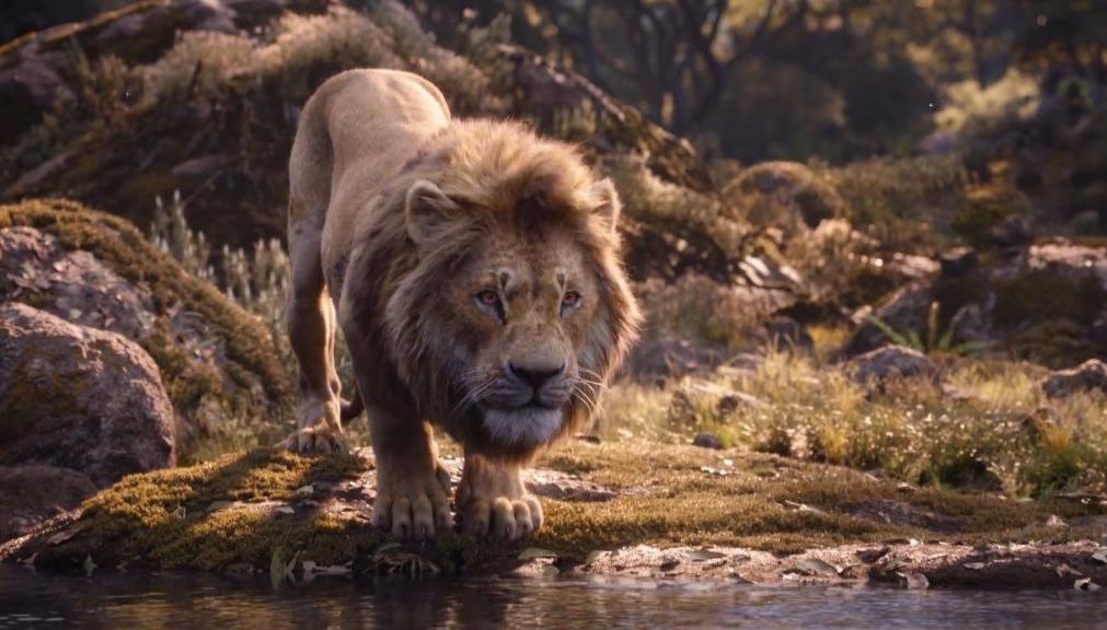 《狮子王》夺韩国周末票房冠军 创下新纪录