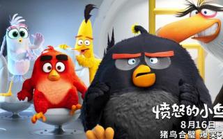 《愤怒的小鸟2》点映 猪鸟化敌为友