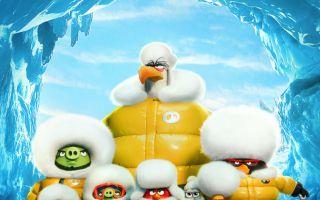 《愤怒的小鸟2》今日首映 曝最详实的观影图谱