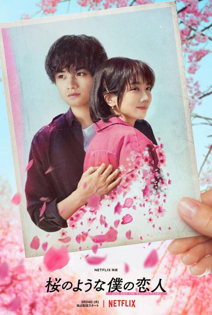 爱情电影《我的樱花恋人》发预告