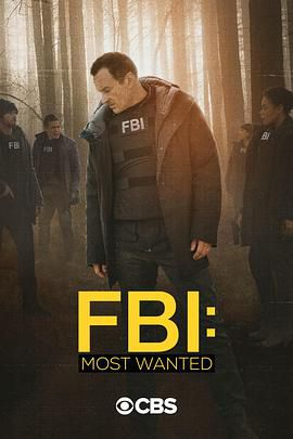 联邦调查局:通缉要犯 第二季
